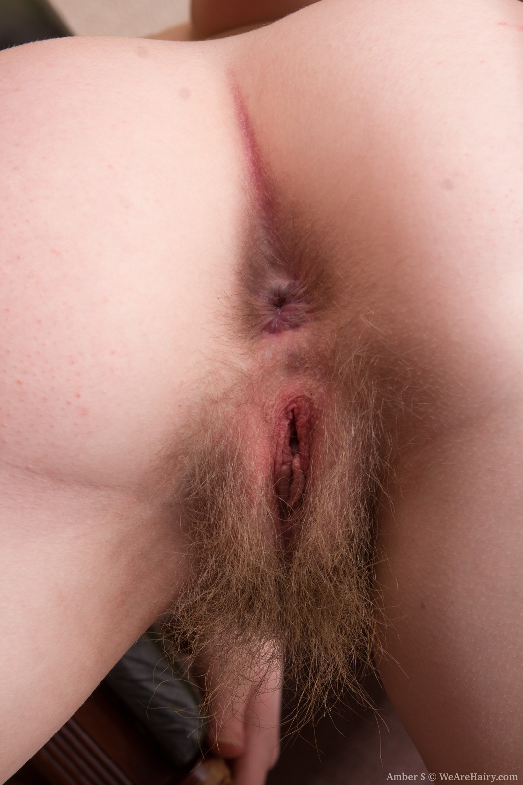 Opinion you Nude hairy pussy mound variants are