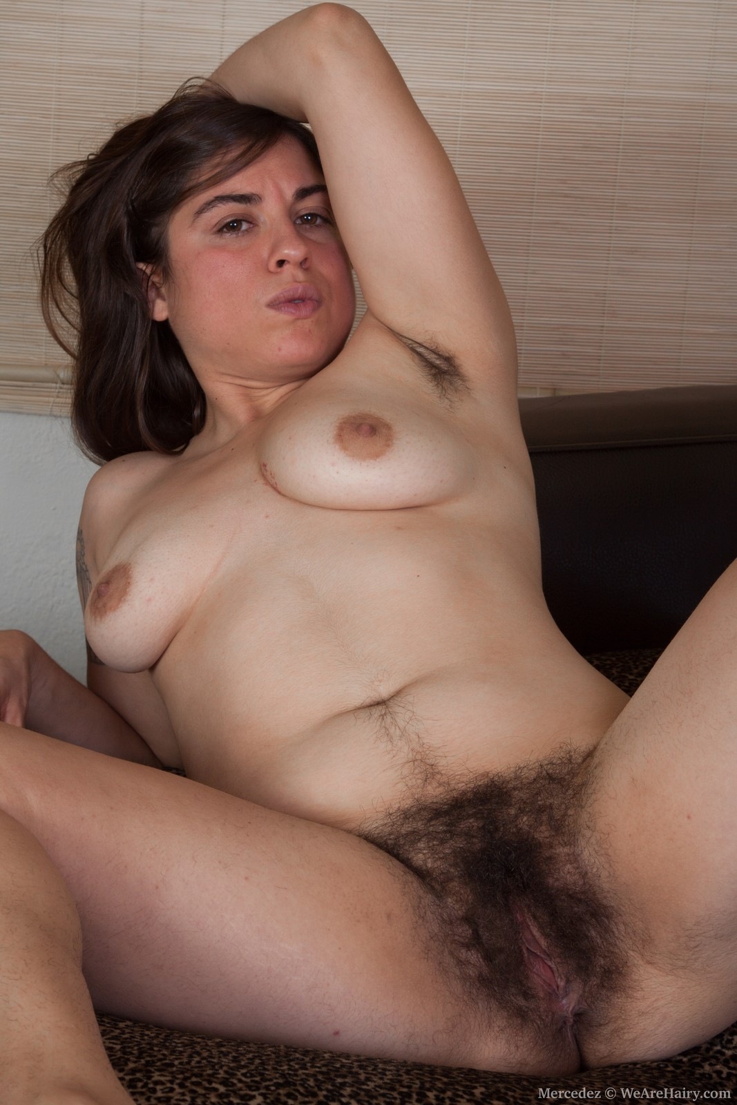 PUSSIES EXTREMELY HAIRY